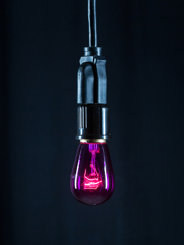 Cafe Bulb Purple Image